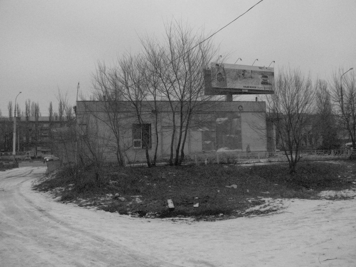 nasha_sreda_obitaniya_goldina_2_voronezh_nunadozhe.ru