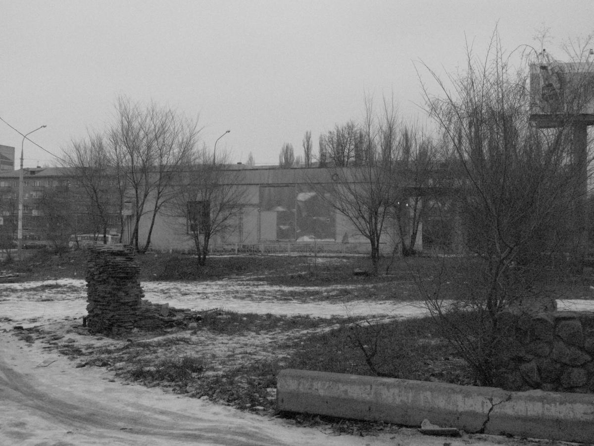 nasha_sreda_obitaniya_goldina_3_voronezh_nunadozhe.ru